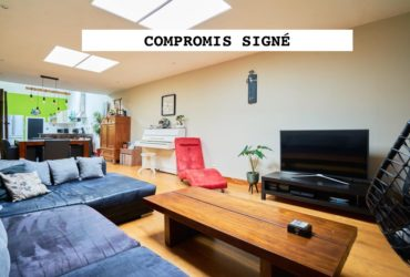 Appartement T3 Type Loft Centre-ville